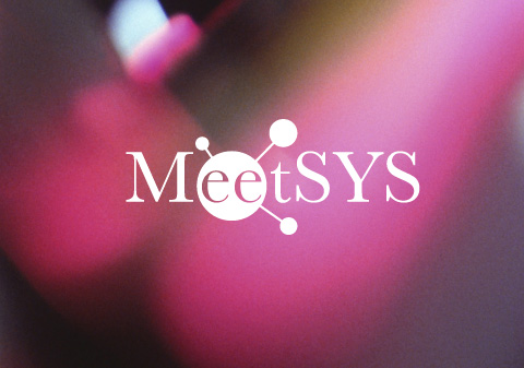 mosaique-meetsys